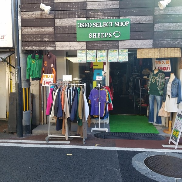 USED SELECT SHOP SHEEPS