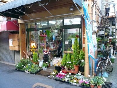 大阪でガーデニング好きなら知っておきたいお店 …